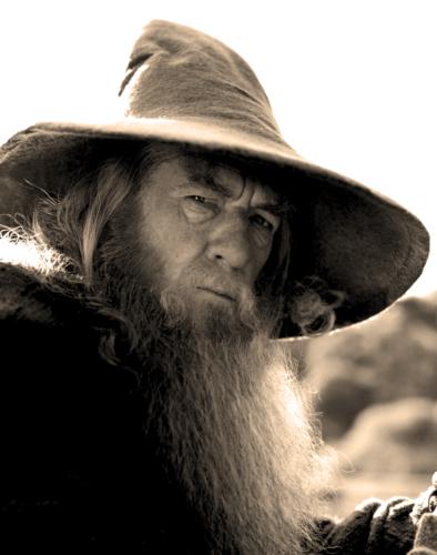 Gandalf w sepii
