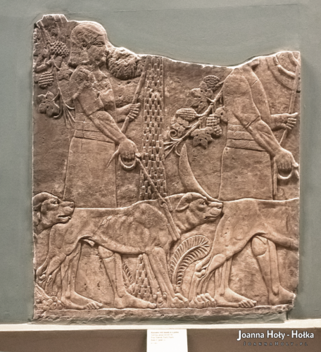 British Museum Lion Hunt of Ashurbanipal fragment