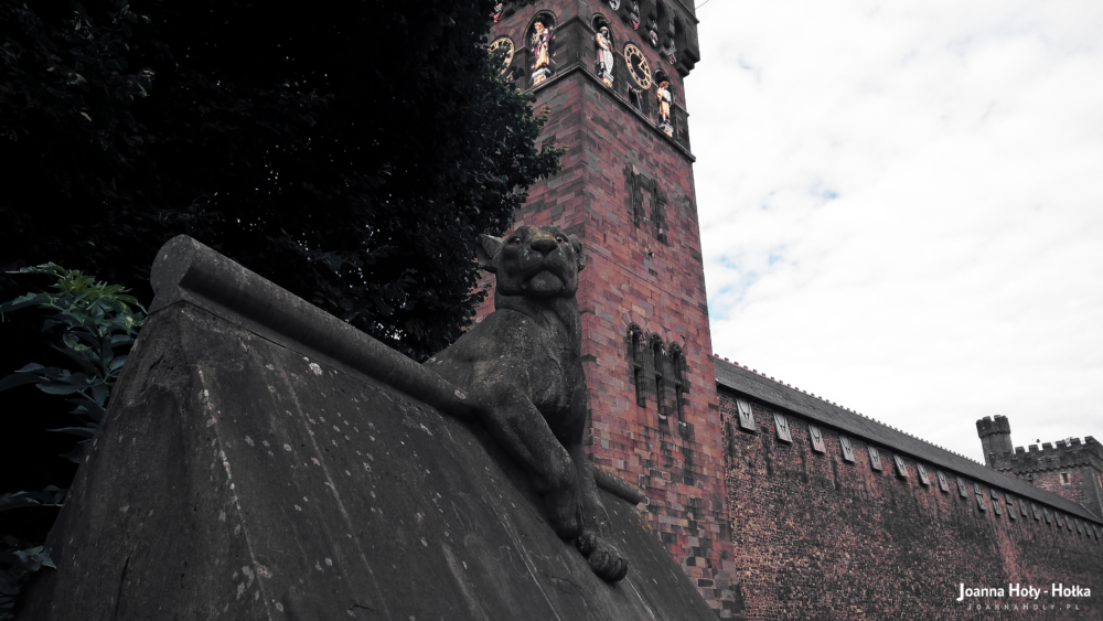 Cardiff - Animal Wall - Lioness