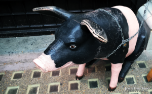 Pig from Strand Street